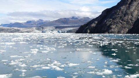 Aialik Glacier Ice Flow Pacific Ocean Alaska Coast Kenai Fjords Footage