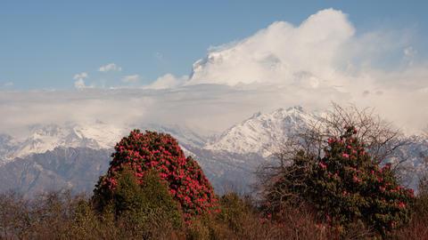 Dhaulagiri Spring Time Lapse Footage