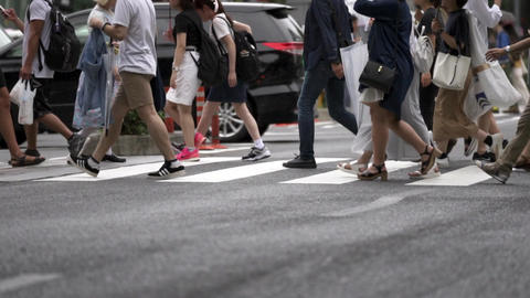 Pedestrian / Urban / Crosswalk Footage