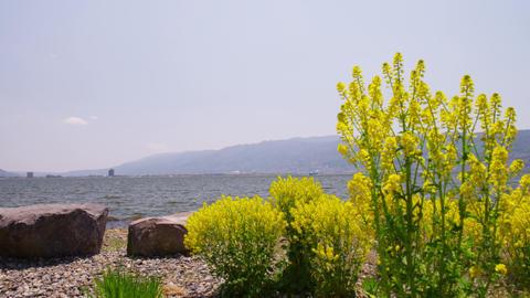 長野県 諏訪湖 Footage