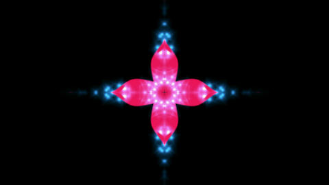 spring sakura pattern,disco flower with... Stock Video Footage