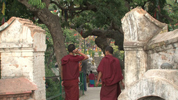 Young monks walking away Stock Video Footage