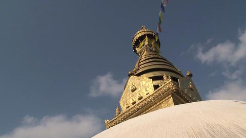Golden top of the Swayambhunath stupa, monkey Stock Video Footage
