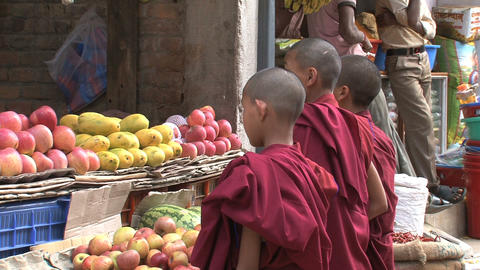 Child Monks stock footage