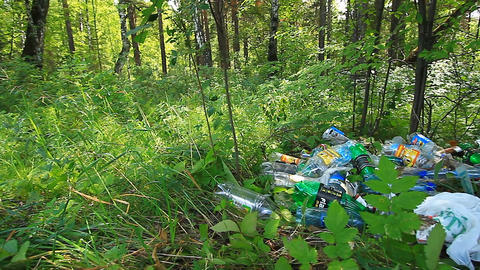 Garbage in the forest Stock Video Footage
