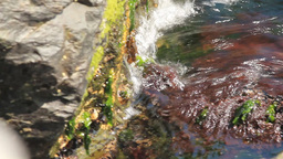 SEA AND ROCKS Stock Video Footage
