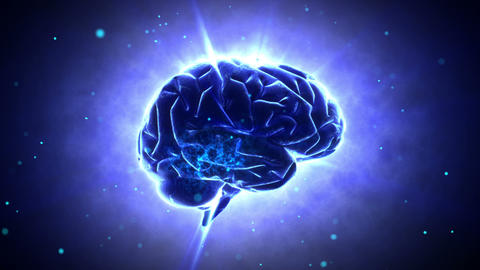 Brain 2 A 1 B HD Stock Video Footage