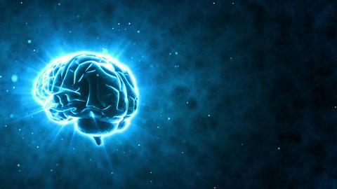Brain 2 A 2 B HD Stock Video Footage