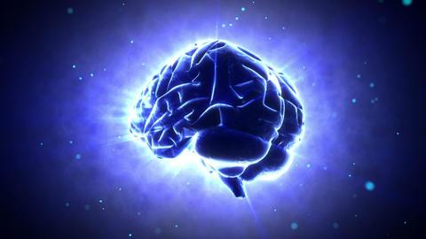 Brain 2 B 1 B HD Stock Video Footage