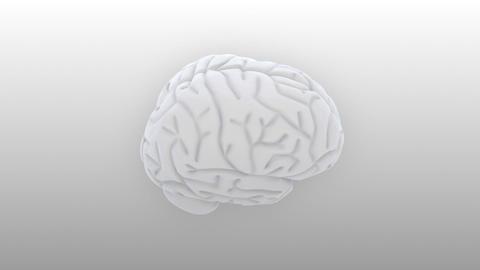 Brain 2 B 1 S HD Stock Video Footage