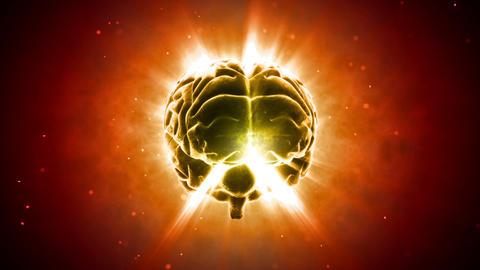 Brain 2 C 1 B HD Stock Video Footage