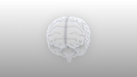Brain 2 C 1 S HD Stock Video Footage