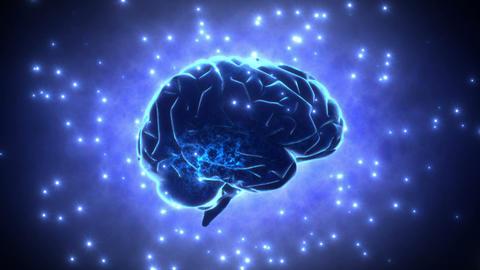 Brain 2 D 1 B HD Stock Video Footage