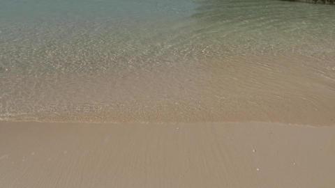 海 Footage