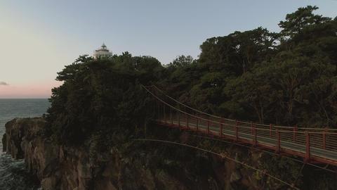 Aerial view 4k ビデオ