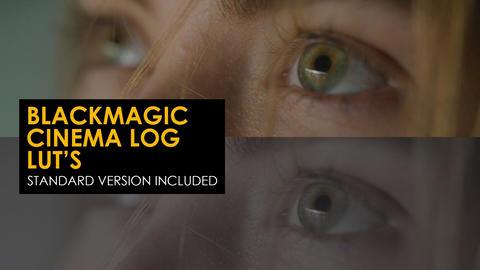Blackmagic Cinema Log And Standard