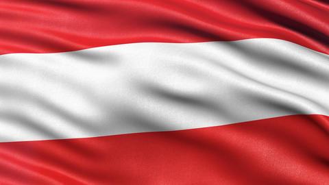 Flag of Austria waving - seamless loop Animation