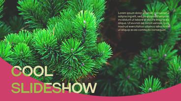 Slideshows 0