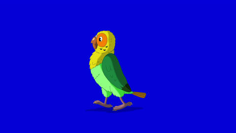 Green parrot walks and stops HD blue screen Animation
