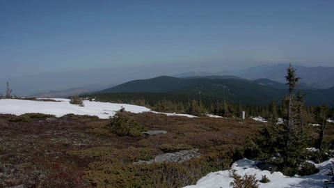 Panoramic landscape with juniper trees and snowy pasture on the north face of a  Footage