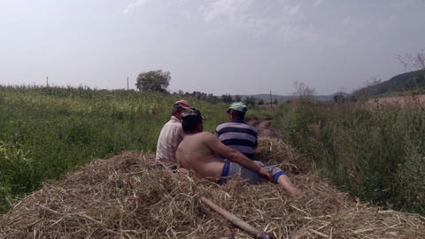 Peasants who return to the village with a carriage of hay that they gathered fro Footage