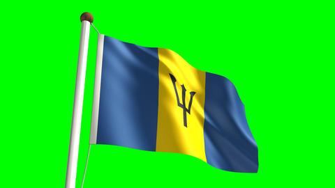 Barbados flag Stock Video Footage