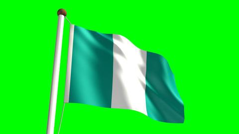 Nigeria flag Stock Video Footage