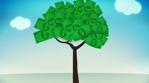 Dollar Plant Animation