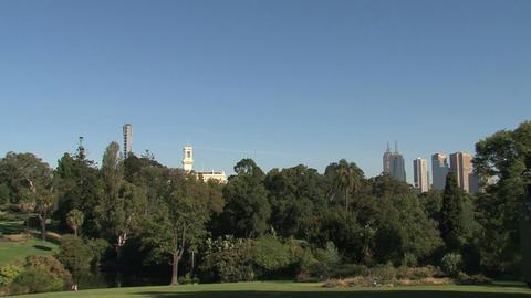 Royal Botanic Gardens Melbourne Stock Video Footage