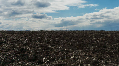 Plowed field Stock Video Footage