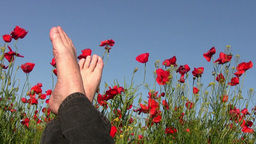 Rest on the poppy field Stock Video Footage