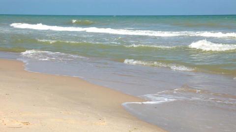 Surf on the beach Footage