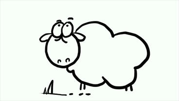 stick figure of cartoon sheep,mutton,Hand painted video... Stock Video Footage