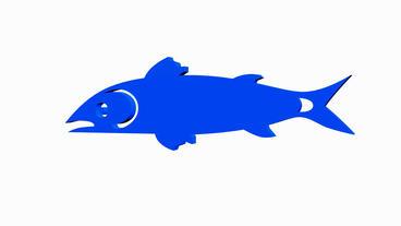 Rotation of 3D fish.sea,food,fishing,ocean,water,market,animal,aquatic,cooking Animation