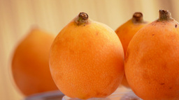 Fruit Tropical Loquat Gyrating stock footage