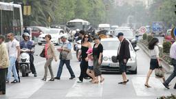 People walking zebra crossing Footage