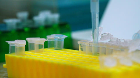 Biological Laboratory stock footage