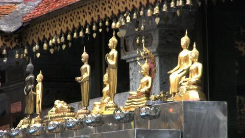 Small Buddha Statues Stock Video Footage