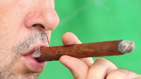 Cigar Stock Video Footage