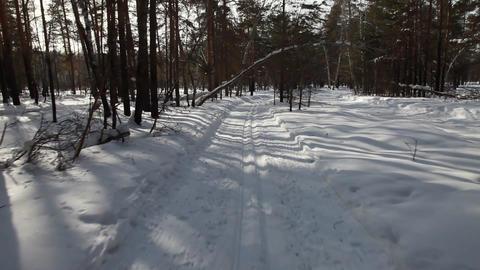 Skiing Stock Video Footage