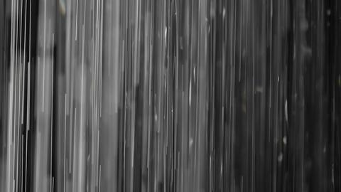 Rain on black. Clip 1 Footage