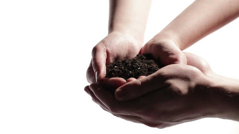 Man's hands support woman's hands with soil Footage