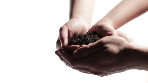 Man's hands support woman's hands with soil Stock Video Footage