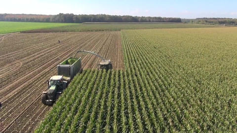 Aerial view of farmers harvesting maize silage Stock Video Footage