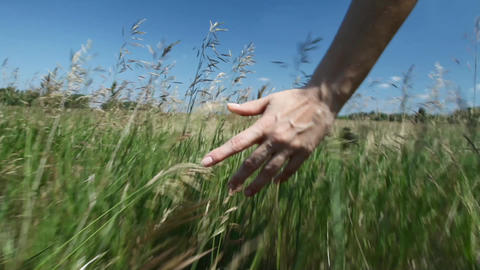 Woman walks across the field Stock Video Footage