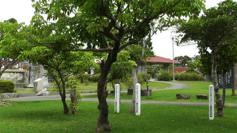 Park in Okinawa Island Ishigaki Japan 1 Stock Video Footage