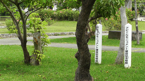 Park in Okinawa Island Ishigaki Japan 3 Stock Video Footage