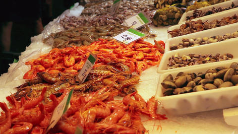 Seafood at fish market in Barcelona, Spain Stock Video Footage