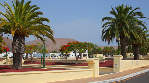 Lanzarote Island, Canary Islands, Spain Stock Video Footage