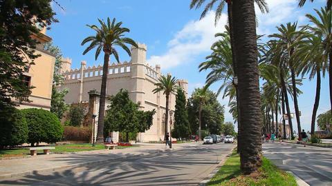 Palma de Mallorca, Mallorca Island, Balearic Islands, Spain Stock Video Footage